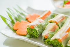 noodle roll Royalty Free Stock Photo