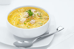 Noodle soup. Close up view of nice yummy russian noodle soup on white back stock image
