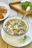 Noodle soup with turkey hearts Royalty Free Stock Images