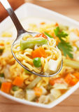 Noodle soup with vegetables Royalty Free Stock Photo