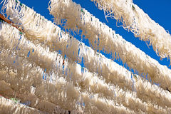 Noodle strings drying in the sun in Myanmar Royalty Free Stock Images