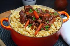 noodles αυγών βόειου κρέατος πέρα από stew στοκ εικόνα με δικαίωμα ελεύθερης χρήσης