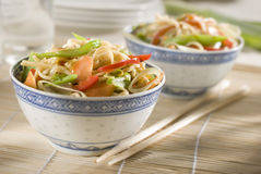 Noodles. Chinese noodles with vegetables close up shoot Royalty Free Stock Photography