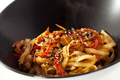 Noodles with Chicken Royalty Free Stock Images