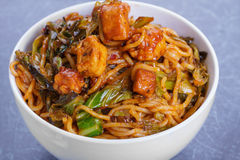 Noodles. Close Up Noodles with Szechuan Tomato Sauce, Chicken and Vegetables Royalty Free Stock Images
