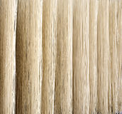 Noodles Drying on Building Stock Photography