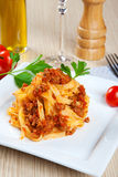 Noodles with meat sauce Royalty Free Stock Images