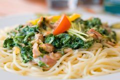 Noodles with spinach and chicken meat Royalty Free Stock Images