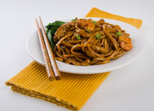 Noodles. stir-fried noodles with chicken Royalty Free Stock Photos