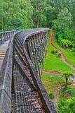 Noojee维多利亚澳大利亚叉架桥 免版税库存照片