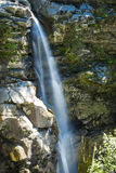 Nooksack falls in cascade range, Washington state Stock Images
