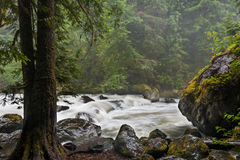 Nooksack River. Stock Photo