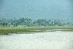 Noong lake and grass Royalty Free Stock Photo
