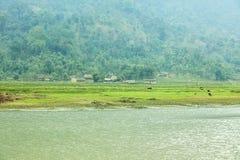 Noong lake and village Stock Photo