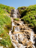 Noontime creek in the summer highland Royalty Free Stock Image
