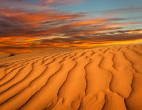 Noord-Afrika, zandige barkhans Stock Foto's