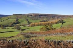 Noord-York legt de herfst vast Royalty-vrije Stock Afbeelding