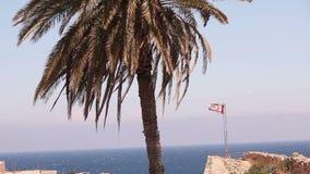 Noordelijk Cyprus, de vlag van de Republiek Noordelijk Cyprus tegen de blauwe hemel en het overzees stock footage