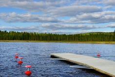 Noordelijk landschap Stock Afbeeldingen