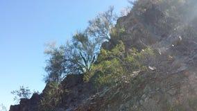 Noordelijke berg Stock Foto