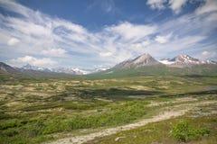 Noordelijke bergen van Provinciaal Park tatshenshini-Alsek, BC royalty-vrije stock fotografie