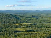 Noordelijke heuvels en eindeloze bossen royalty-vrije stock fotografie