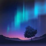 Noordelijke Lichten stock illustratie