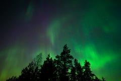 Noordelijke lichten stock foto