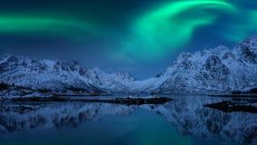 Noordelijke lichten, Aurora borealis, Lofoten-eilanden, Noorwegen Het landschap van de nachtwinter met polaire lichten, sterrige  stock foto's