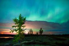 Noordelijke Lichten (borealis van de Dageraad) royalty-vrije stock afbeeldingen