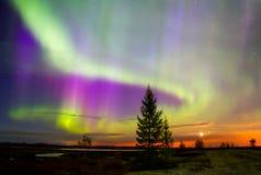 Noordelijke Lichten (borealis van de Dageraad) Royalty-vrije Stock Foto