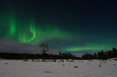 Noordelijke Lichten (borealis van de Dageraad) royalty-vrije stock foto's