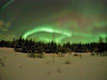 Noordelijke Lichten - IJsland Stock Foto