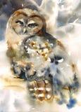 Noordelijke Owl Bird Watercolor Winter Illustration-Geschilderde Hand Royalty-vrije Stock Fotografie