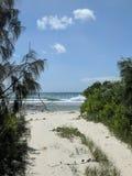 Noordelijke stranden van Moreton-eiland royalty-vrije stock afbeelding