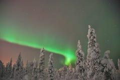 noorderlicht (极光borealis) 免版税库存照片
