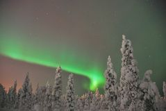 Noorderlicht (aurora borealis) Royalty Free Stock Photos