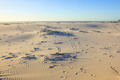 Noordhoek海滩背景 免版税库存照片
