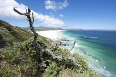 Noordhoek Coast view Royalty Free Stock Images