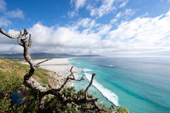 Noordhoek Coastline Stock Images
