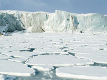 Noordpool Oceaan - gletsjer en ijs Stock Foto's