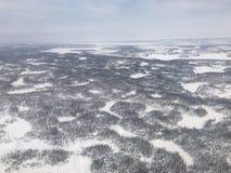 Noordpool Toendra Royalty-vrije Stock Afbeelding