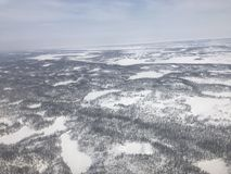 Noordpool Toendra Royalty-vrije Stock Foto