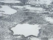 Noordpool Toendra Stock Fotografie