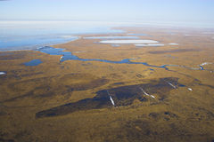 Noordpool toendra van lucht Royalty-vrije Stock Foto