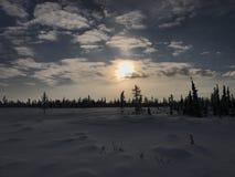 Noordpooldaglicht Royalty-vrije Stock Fotografie