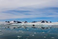 Noordpoollandschap met gletsjer in Svalbard royalty-vrije stock afbeeldingen