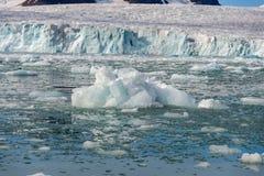 Noordpoollandschap in Svalbard met gletsjer in de zomertijd royalty-vrije stock afbeelding