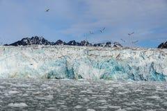 Noordpoollandschap in Svalbard met gletsjer in de zomertijd stock foto