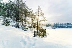 Noords de winterlandschap royalty-vrije stock afbeeldingen
